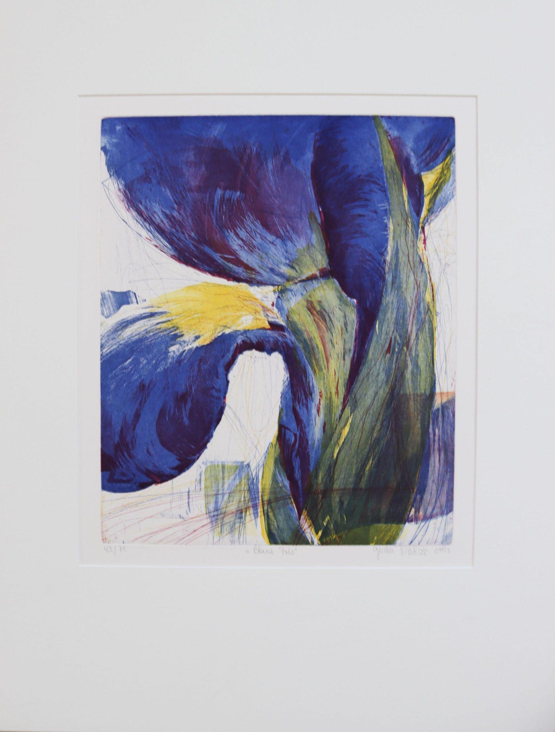 Blaue Iris - Nietzer, Gerda - k-08816