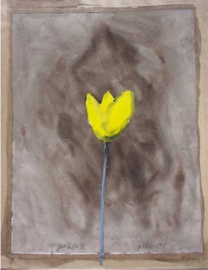 Gelbe Tulpe VII - Nickel, Klaus - k-13292