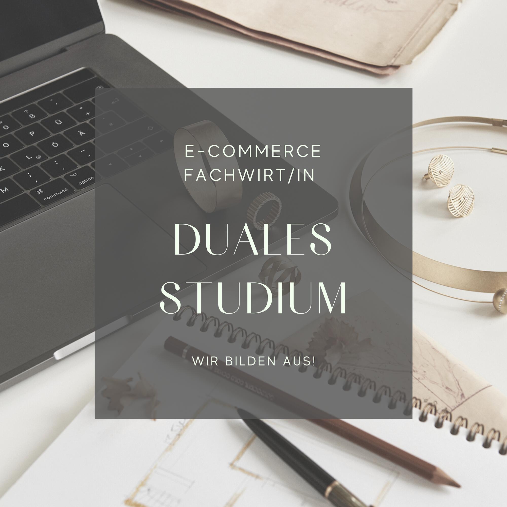 Duales Studium, Fachwirt E-Commerce